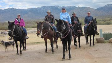 saddlebrooke ranch horseback riding club in northwest tucson